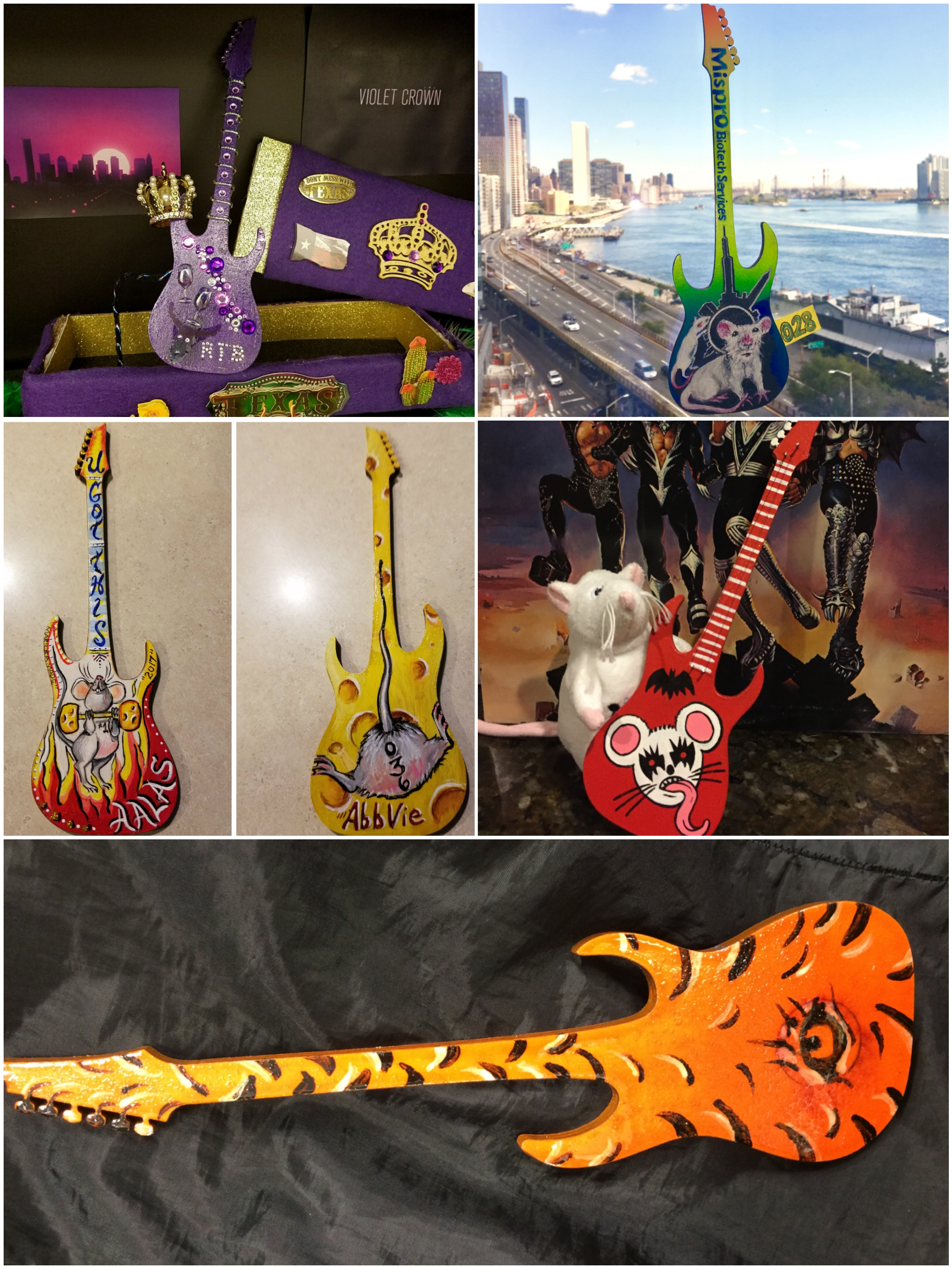 "AALAS Foundation Announces Winners of the 2017 ""Guitar Animal Hero"" Contest"